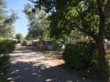 Pitch - Camping pitch - Camping Le Moulin des Oies