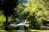 Pitch - Comfort Package (1 tent, caravan or motorhome / 1 car / electricity 10A) - Flower Camping Le Paluet