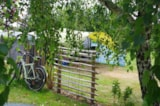 Pitch - Camping pitch + vehicle (without electricity) - Camping du Vieux Verger