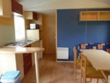 Rental - MOBIL HOME - Camping Sites et Paysages BELLE ROCHE