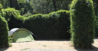 Comfort Package Tent (Electricity 10A) 80M²