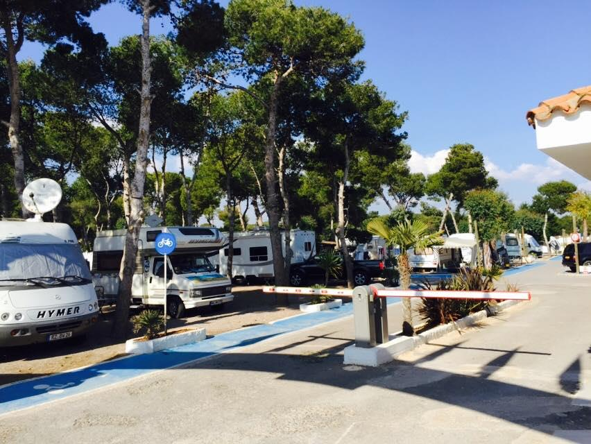 Emplacement - Emplacement Levante 60M²+ Voiture + Animal - Camping Didota