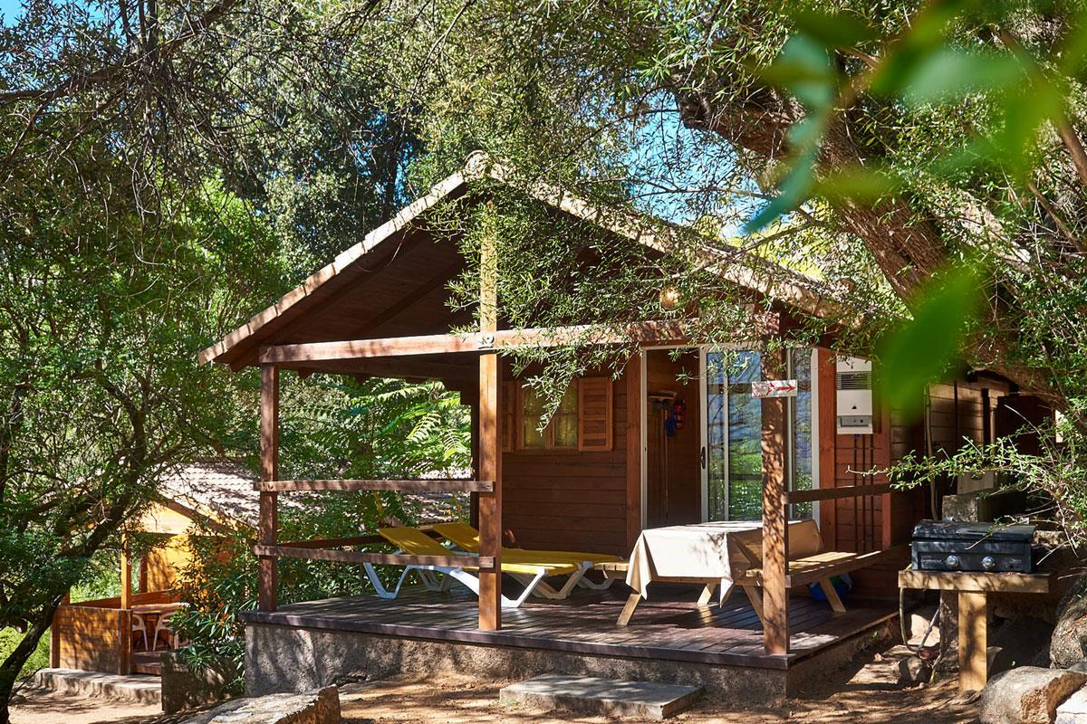 Accommodation - Chalet Scandola - 35M² - 2 Bedrooms - Camping Les Oliviers