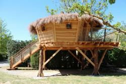 Pan Treehouse