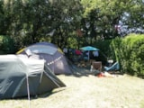 Pitch - Standard Package : Pitch, car, tent/caravan/camping-car - Camping LE MARTINET ROUGE