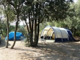 Pitch - Comfort Package: Pitch, car, tent or caravan or camping-car, electricity - Camping LE MARTINET ROUGE