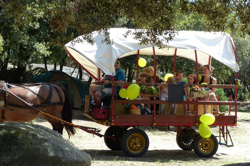 Leisure Activities Camping LE MARTINET ROUGE - Brousses et Villaret