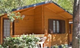 Rental - Bungalow 2 Bedroom - Kitchen - Campeggio Bosco Verde
