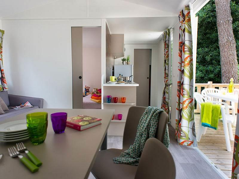 Accommodation - Esprit 2 Bedrooms With Terrace - La Pignade