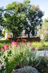 Rental - Mobile home 35m² PREMIUM S - 3 bedrooms - terrace - Camping L'Ombrage