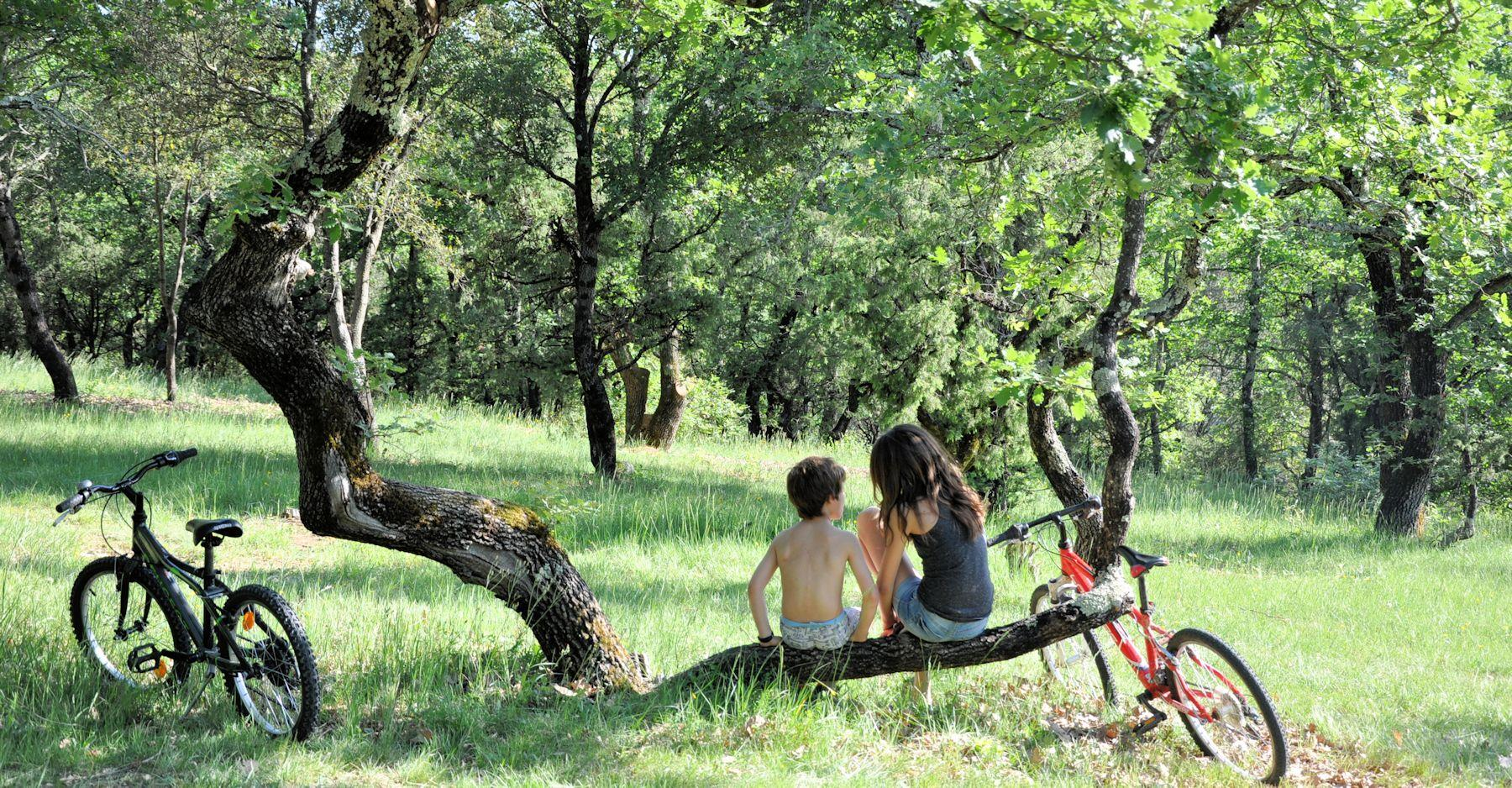 Camping L'Ombrage - Lagorce