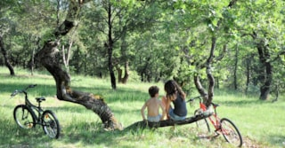 Camping L' Ombrage - Lagorce