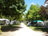 Pitch - Pitch CONFORT caravan/camping-car, 1 car, electricity 6 Amp. - Camping Due Laghi