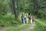 Leisure Activities Camping Due Laghi - Levico Terme (TN)