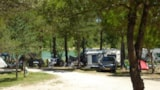 Pitch - Comfort Package (1 Tent, Caravan Or Motorhome / 1 Car / Electricity10a) - Camping Lac de Thoux St-Cricq