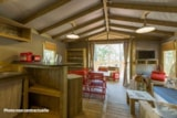 Rental - SAFARI Lodge - Camping l'Airial