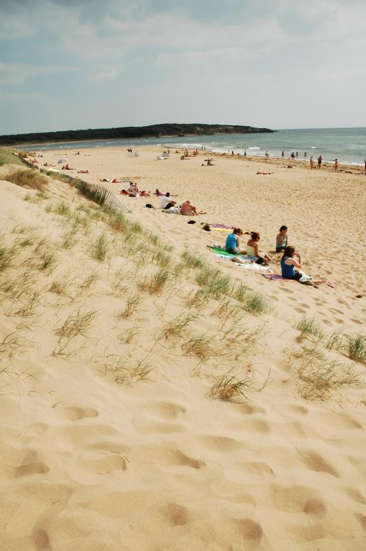 Beaches Camping Loyada - Talmont St Hilaire