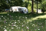 Establishment Camping Sites Et Paysages Au Bois Joli - Andryes