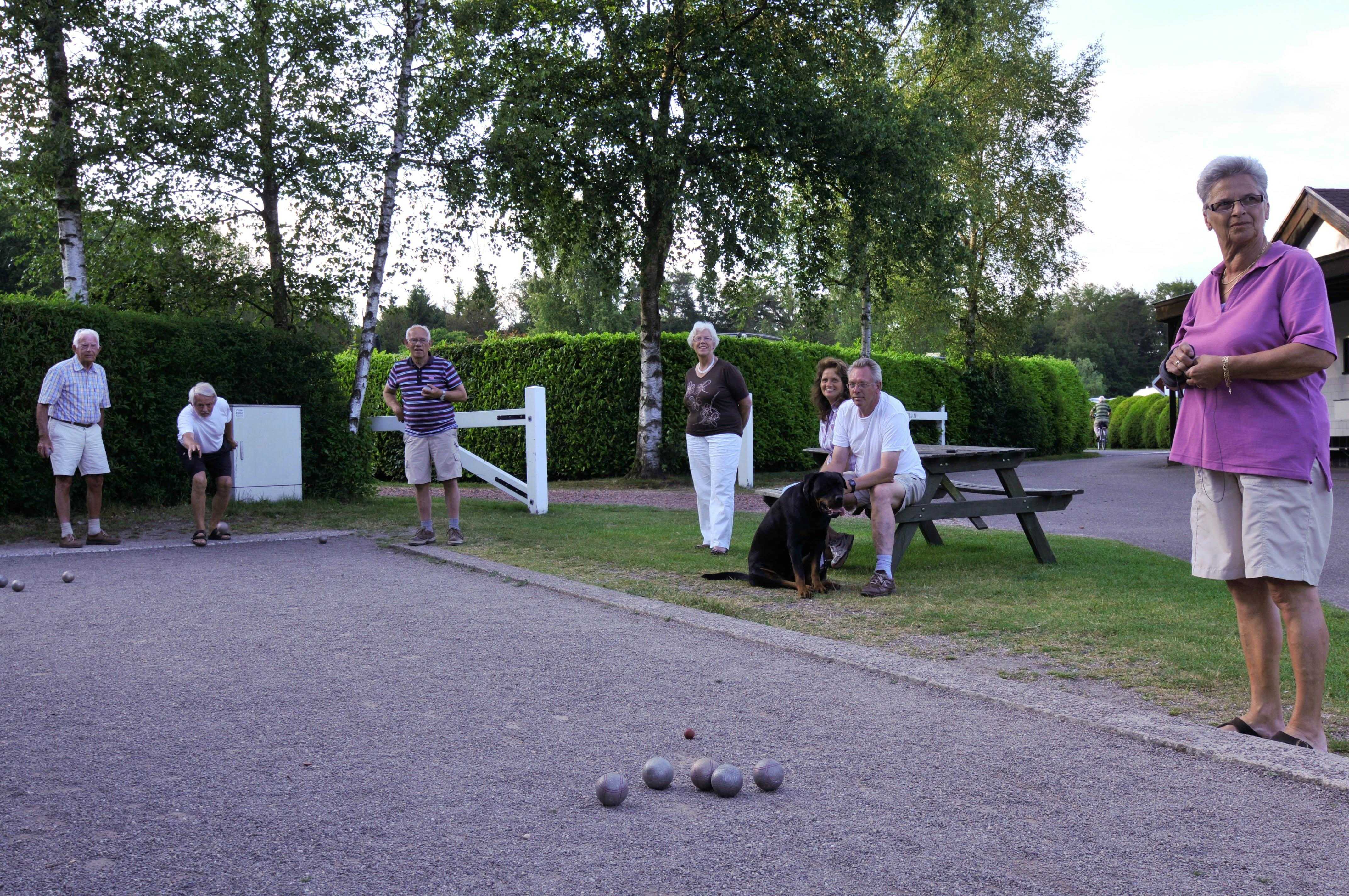 Sport activities Camping De Helfterkamp - Vaassen