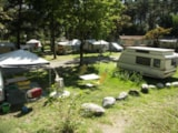 Pitch - Pitch + caravan or tent - Camping Le Reclus