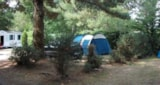 Pitch - Comfort Package (1 tent, caravan or motorhome / 1 car / electricity 10A) - Camping le Fort Espagnol