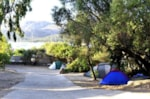 Emplacement - Emplacement type C - Camping Capo d'Orso
