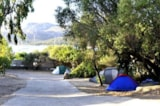 Pitch - Pitch Type C - Camping Capo d'Orso