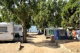 Pitch - Pitch B - Camping Capo d'Orso
