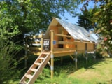 Rental - Mini Teepee On Piles Confort 8M² - 1 Bedroom - Electricity  + Terrace - Without Toilet Blocks - Flower Camping Le Haut Dick