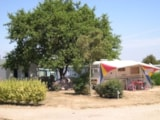 Pitch - Pitch CONFORT + 1 vehicle + Electricity 6A - Camping La Tabardiere