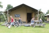 Rental - 4-persoons Woodlodge - Camping De Pampel
