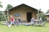 Rental - 6-persoons Woodlodge - Camping De Pampel