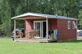 Rental - Boslodge - Camping De Pampel
