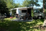 Pitch - Nature Package, 1 tent, caravan or motorhome, 1 car + electricity 6A - Camping De Pampel