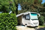 Pitch - Large Pitch T3 electricity + 1 car or 1 camping-car, 1 tent or 1 caravan (per week) - Camping Les Cigales