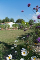 Pitch - Pitch Trekking Package by foot or by bike with tent - Flower Camping Le Petit Paris