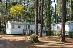 Mobile-Home Standard 2 Bedrooms