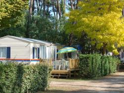 Mobile-Home Standard 3 Bedrooms