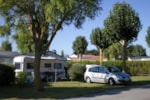 Piazzole - Forfait A Piazzola + veicolo + tenda, roulotte o camper + 6 A - Camping La Ningle
