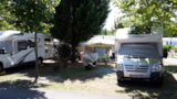 Pitch - location electrified 2 persons and more - Camping L'Arbre d'Or