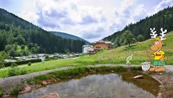 Etablissement Camping Kleinenzhof - Bad Wildbad