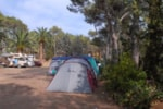 Pitch - Pitch. Only for young people. - Camping Santa Elena Ciutat