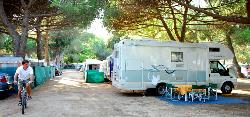 Emplacement - Emplacement camping-car - Camping Vall d'Or