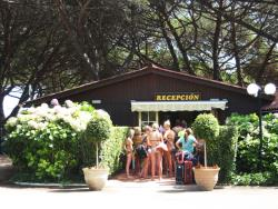 Camping Vall d'Or