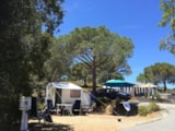 Pitch - Pitch + car + tent or caravan - Camping Les Lauriers Roses