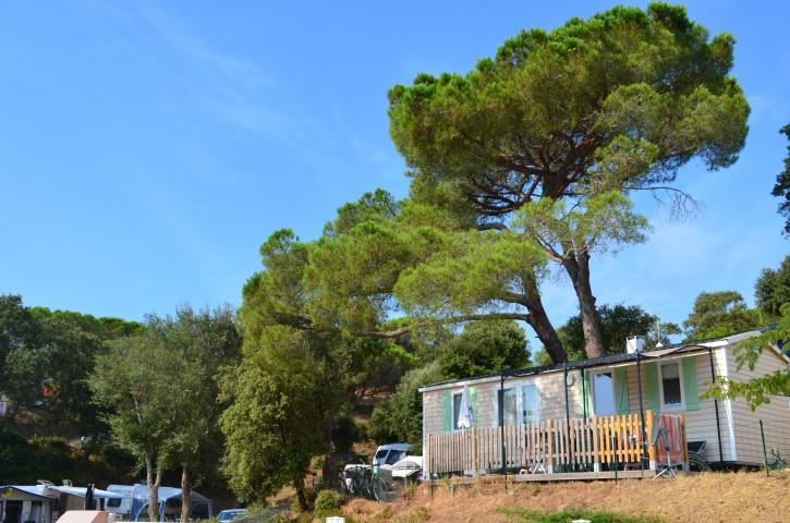 Location - Mobilhome Confort 25M² Clim Inclus - Camping Les Lauriers Roses