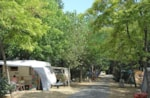 Camping Le Rossignol - Antibes