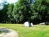 Pitch - Pitch + 1 car + tent , caravan or camping-car - Camping Les Chambons