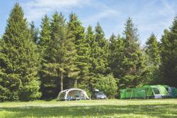Etablissement Forest Glade Holiday Park - Cullompton