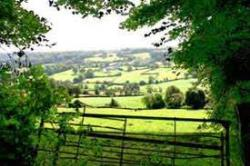 Region Forest Glade Holiday Park - Cullompton